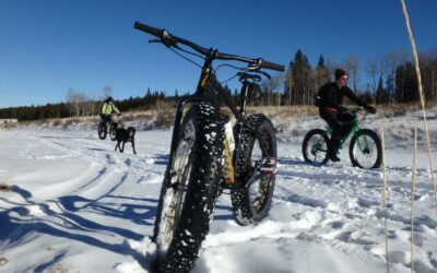 Fat Tire Fantasy in the Bighorns