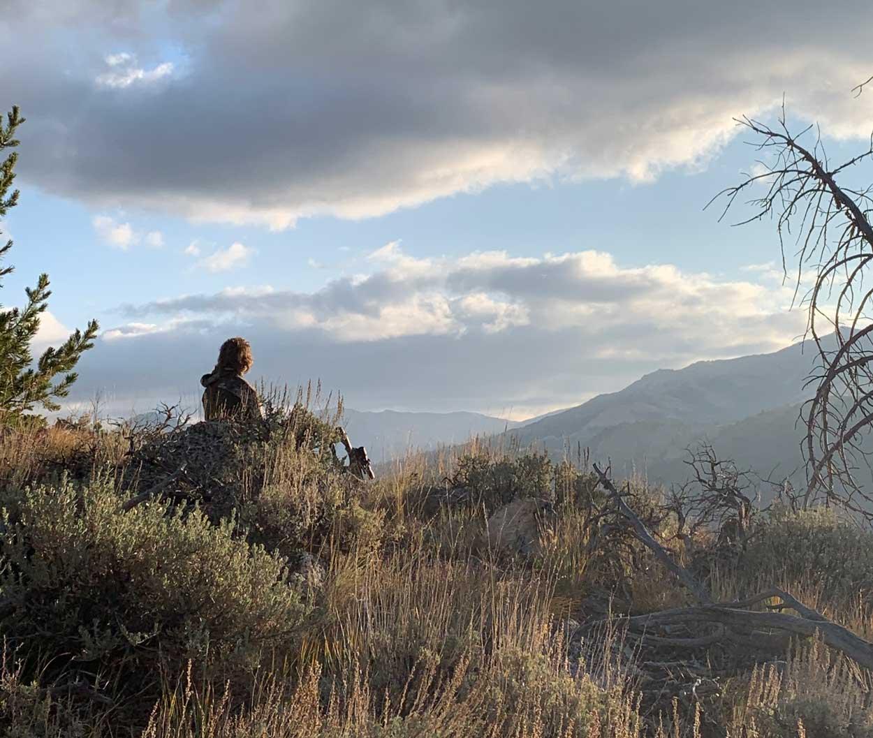 elk-hunting-bighorn-mountains-wyoming