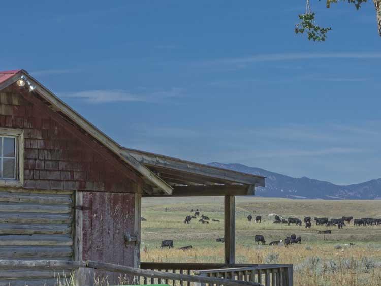 ta-ranch-johnson-county-cattle-war-wyoming